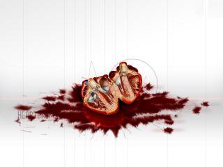 обои Мясо и кровь фото