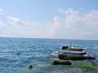 обои Волнорез в море фото