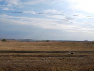 обои Проезжая через поле фото