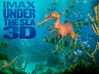 обои На глубине морской фото