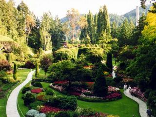 обои Весенний сад фото