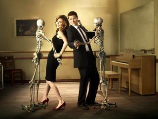 обои Bones. Танцы со скелетами фото