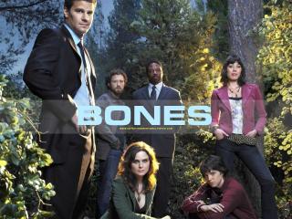 обои Bones. На природе фото