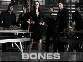 обои Bones. Главне герои фото