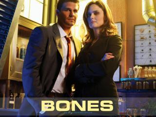 обои Bones. Детективы фото