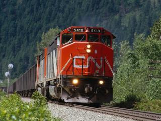обои Поезд на фоне горного леса фото