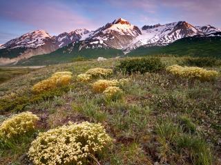 обои Долина реки Олсек. Канада фото