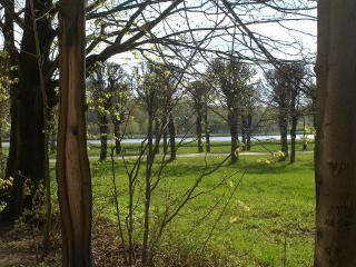 обои Парк в усадьбе Кусково фото