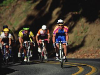 обои Несколько велогонщиков фото