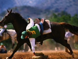 обои Падение  с лошади фото