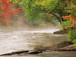 обои Легкий туман над рекой фото