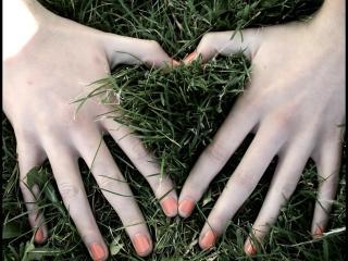 обои Сердце руками, на траве фото