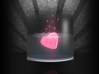 обои Сердце в стакане фото