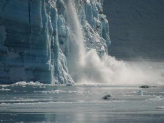 обои Обрушение льдины фото