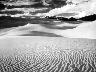 обои Пустыня,   черно белая фотка фото