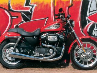 обои Harley-Davidson XL883R 2006 фото