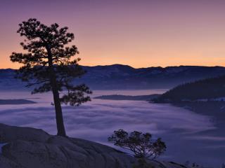 обои Donner Lake at Sunset фото