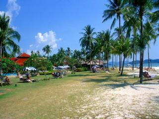 обои Курорт и пальмы фото