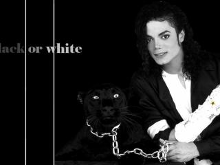 обои Michael Jackson BW фото