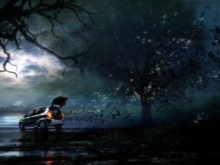 обои Автомобиль в зловещем лесу фото
