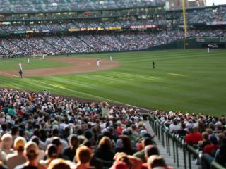 обои Стадион по игре в бейсбол фото