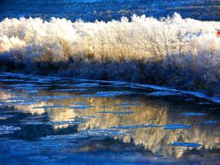 обои Солнечный зимний день на реке фото