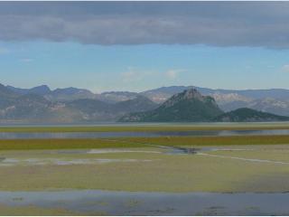 обои Скадарское озеро, Черногория фото