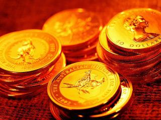 обои Золотые монеты фото