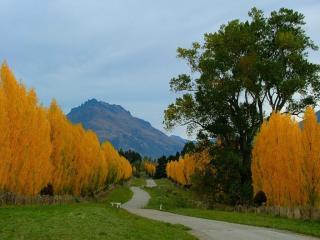 обои Осень в Квинстауне фото