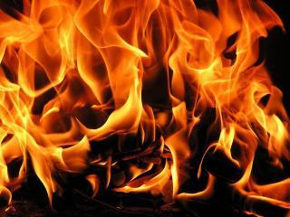 обои Пламя костра фото