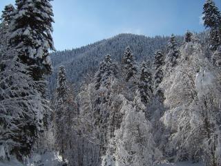 обои Горный пейзаж зимой фото