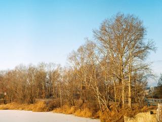 обои Осенний берег фото