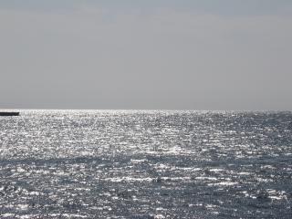 обои Красное море фото