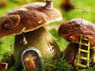 обои Домики из грибов фото