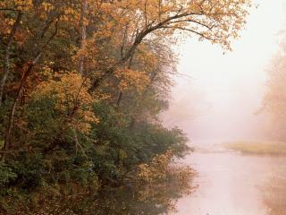 обои Река Баффало в Арканзасе фото