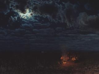 обои Ночью в степи фото
