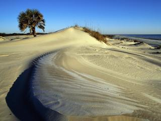 обои Cumberland Island National Seashore,   Georgia фото