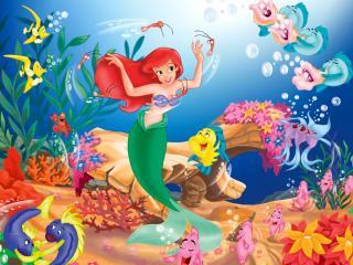 обои Little Mermaid фото