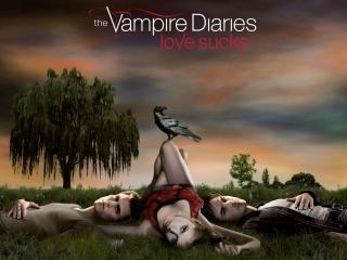 обои The Vampire Diaries фото
