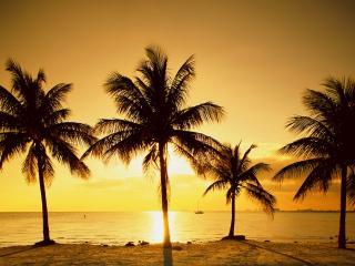 обои Ки-Бискейн. Майами фото
