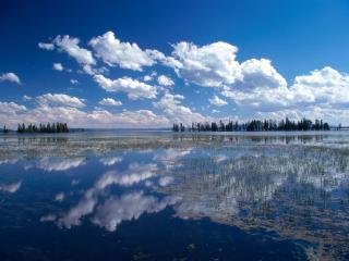обои для рабочего стола: Озеро Йеллоустоун