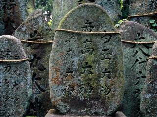 обои Fushimi-inari Taisha Shrine,   Kyoto,   Japan фото