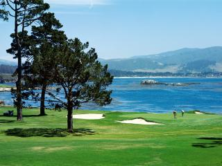 обои Прекрасные поля для гольфа фото