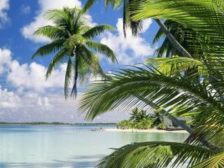 обои Остров Такапото, Французская Полинезия фото