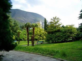 обои Парк в Крыму фото