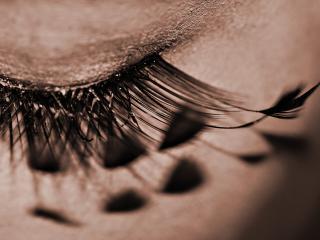 обои Макияж глаза - Накладные ресницы, перышки фото