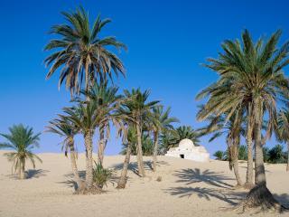 обои для рабочего стола: Пустыня Сахара