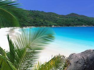 обои Тропический рай. Сейшеллы фото