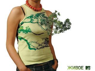 обои Оживленное растение фото