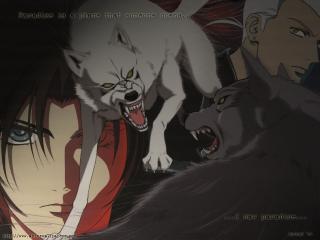 обои Wolf фото